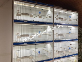 Batterie elevage PVC avec Éclairage Dimmer-leds Ref 012