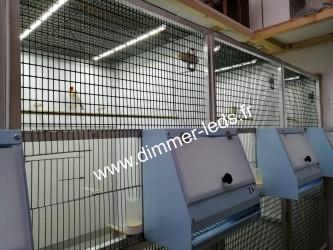 Volière aluminium avec Éclairage Dimmer-leds Ref 005