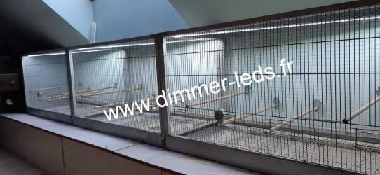 Volière aluminium avec Éclairage Dimmer-leds Ref 011