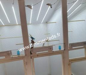 Volière bois avec Éclairage Dimmer-leds Ref 001