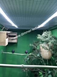 Volière bois avec Éclairage Dimmer-leds Ref 010