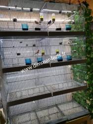 Batterie élevage Molinari avec Éclairage Dimmer-leds Ref 005