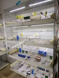 Batterie élevage Molinari avec Éclairage Dimmer-leds Ref 010