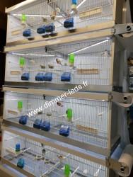 Batterie élevage Italgabbie avec Éclairage Dimmer-leds Ref 001