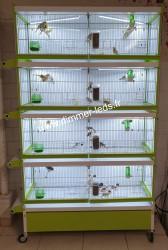 Batterie élevage Italgabbie avec Éclairage Dimmer-leds Ref 006