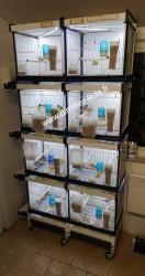 Batterie élevage Italgabbie avec Éclairage Dimmer-leds Ref 004